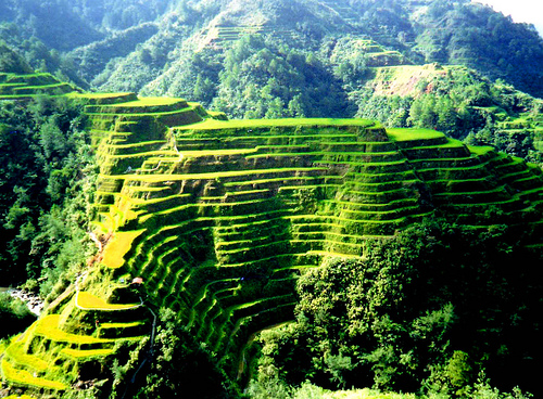 Découvrez la ville de Banaue et ses rizières en terrasses à Luzon aux Philippines